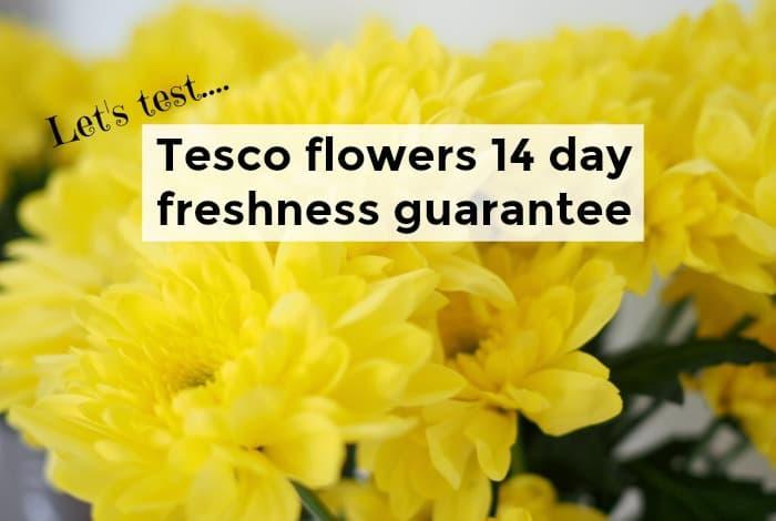 Let's Test: Tesco flowers 14 day freshness guarantee....