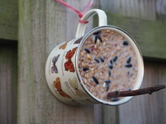 Homemade bird feeder in a mug