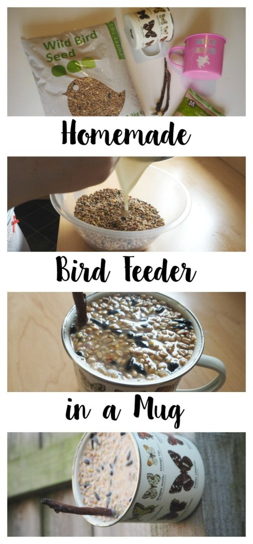 Make a cute homemade bird feeder in a mug to help feed the birds this Winter!