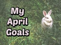 My April Goals....