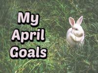 My April Goals....