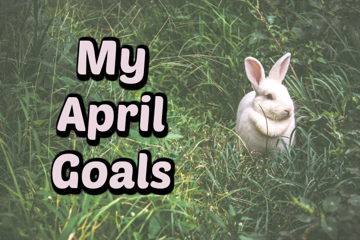 My April Goals