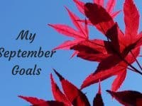 My September Goals....