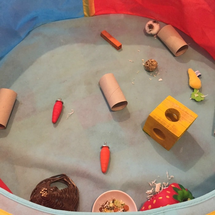 Our version of a hamster play pen