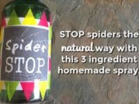 Stop spiders the natural way....