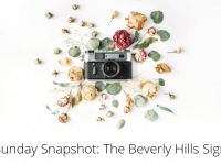 Sunday Snapshot: The Beverly Hills sign....