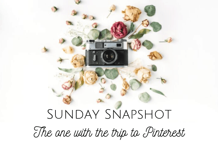 Sunday Snapshot - the one with the trip to Pinterest.