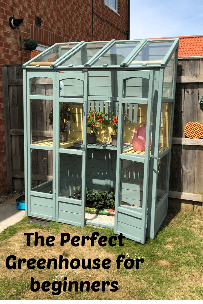 The Perfect Greenhouse for beginners