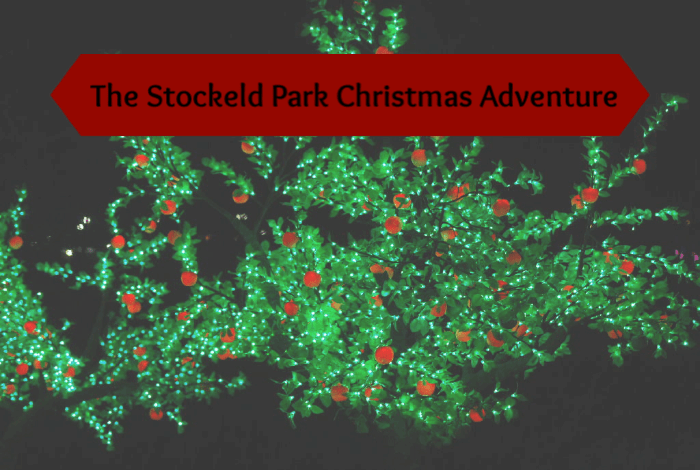 The Stockeld Park Christmas Adventure