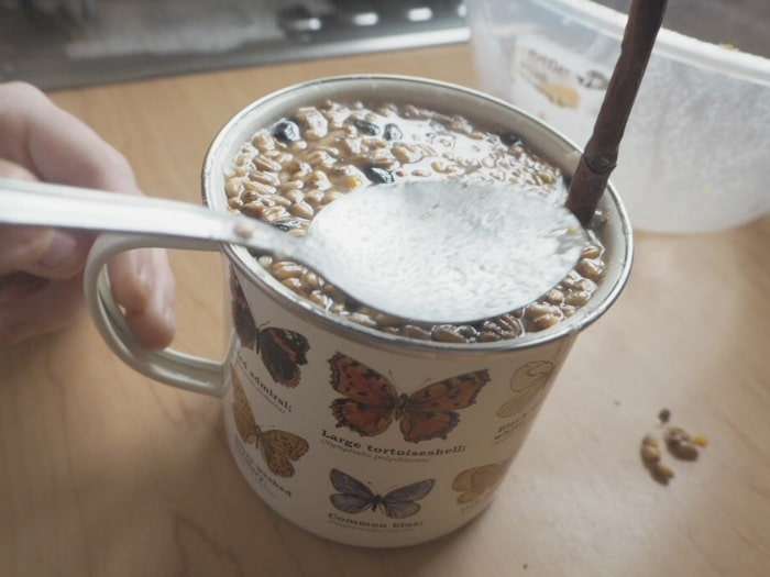 Make a Homemade bird feeder in a mug.