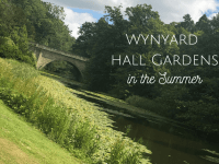 Wynyard Hall Gardens in the Summer...