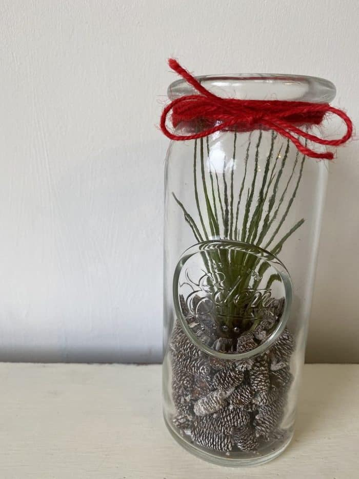 Homemade Air Plant Terrarium