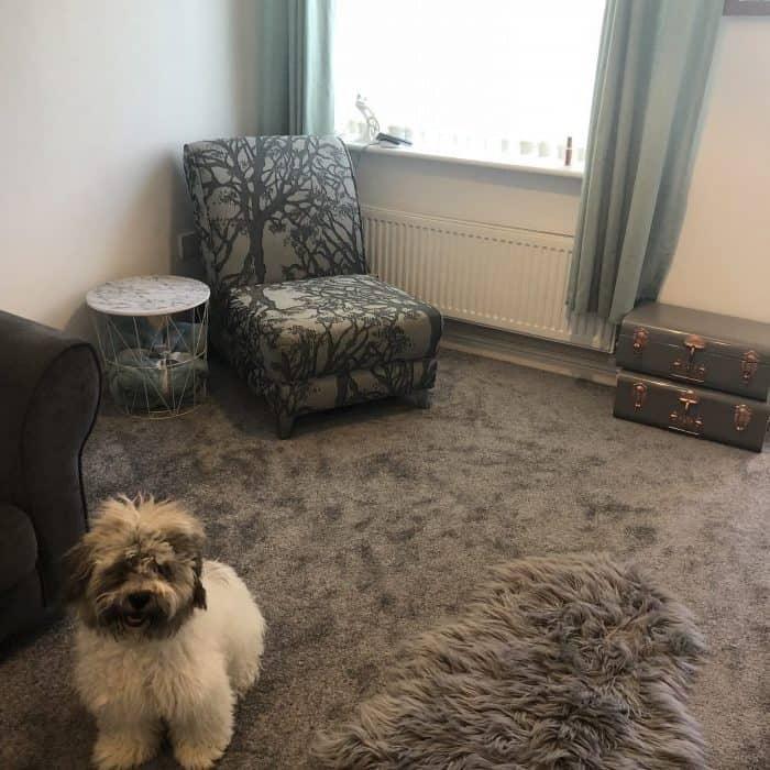 New carpet day!